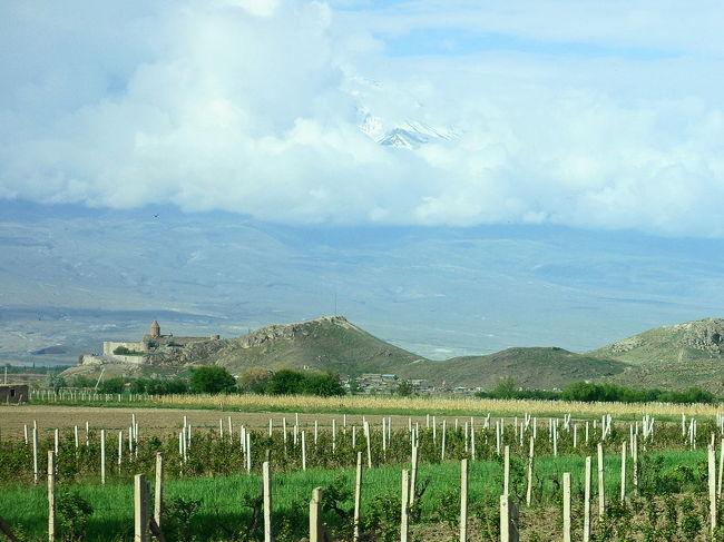 2017年のGWはコーカサス3国へ。中でもアルメニアが第一の目的でした。<br /><br />その11は、首都イェレバンの南40Km、トルコとの国境にもほど近い、アララト山を望むホルヴィラップ修道院へ。ここは3世紀に啓蒙者グレゴリウスが13年間も穴の中に幽閉されていた所。その穴の上に教会が建てられました。そもそも、ホルヴィラップとは「深い穴」の意味。天井からは10mほどもある穴の底は一刻も早く抜け出したいと思うほどの閉塞感でした。<br /><br />・見えるか見えないか、アララト山<br />・ホルヴィラップ修道院<br />・聖グリゴール聖堂の地下へ<br />・近くの丘の上から<br /><br />表紙写真は、ぶどう畑の向こうに見える、丘の上のホルヴィラップ修道院と、その向こう、雲の中のアララト山。