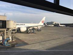 JAL 787-8 (SS8) ビジネスクラス搭乗記