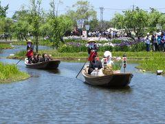 香取市散策(3)・・水郷佐原あやめパークにあやめ祭りを訪ねます。