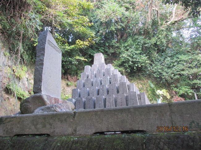 江戸の神田上水に遅れること僅かに数十年、この薩摩の僻遠の地に於いて上水道が完備され、城下の家庭に配給されていたのは驚きであったが、この一事を見ても薩摩の進歩性がうかがえた。豊織の時代、全国大名を平定した秀吉は唯一手を下すことの出来なかった藩がここ薩摩で、政略により日向の支藩の幾つかを分離させたに過ぎなかったが、江戸期に入ってもその薩摩の力を削ぐ政策がとり続けられてきた。先年桑名を訪問した時、木曽川の河岸、旧東海道の船着き場、桑名宿を訪問した際、そこに江戸時代の中期の宝暦年間、幕府に命じられた薩摩藩が多大な犠牲を払って桑名三川、木曽川、揖斐川、長良川の河川分流の土木工事、河川工事を行い、その後のこの地区の川の氾濫を食い止めた事績の石碑が建っていて、ああ、徳川の幕閣親藩はそれ程までに薩摩の力を恐れ、無理難題を命じたのか、としみじみ思った。<br /><br />今この城山を下り、丁度その同じ頃藩内では「近衛の水」の水道事業を始めていたが、その源泉取り入れ口から少し下った場所、城山の麓の西郷洞窟へ向かう登り口付近に「薩摩義士の石碑」が建っていた。ここの石碑は桑名とは比較にならないほど立派なもので、この河川工事で落命した80余名の御霊を祀るものであった。今ではこうした河川事業を知る人は濃尾平野のごく一部の人、或いは薩摩人の一部しか知らないであろうが、今でもこうして顕彰され香花は絶えない。<br /><br />この石碑のすぐ下は既に旧鶴丸城の辰の位置に当たり、苔むした石垣が見えている。浅い空堀だ。このお城は戦闘用に作られたものではなく、武田信玄の甲府城、「お館」とか、自分が休日によくハイキングに行く旧八王子城の「御主殿」のようなもので、天守閣を持たない御殿であった。信玄の、「城は人、人は石垣」、ではないが、ここ薩摩も周囲を島津親族、家臣団に守られ、敢えて堀を深堀りすることもなく、防御の天守閣を備えることもなかったのだ。<br /><br />当方が年末の慌ただしい中、鹿児島までやってきた背景の一つには直前に読んだ宮尾登美子の「天璋院篤姫」に啓発されたのも理由の一つで、嘗て鹿児島は通過したに過ぎない街だったが、今回は少しゆっくり観光して見よう、とのことだった。最初に城山を訪ね、西郷終焉の地に立ち、正面の雄大な桜島を眺め、既に鹿児島にやって来た十分な価値を見出したが、この鶴丸城でも篤姫の何等かの足跡を知ることになるだろう。<br /><br />低い石垣は当時のままだったが、城内にあった御殿は取り払われていて、今では黎明館という記念館になっているが、その建物の前に篤姫の立派な銅像が建っていた。島津外戚に生まれた姫は斉彬の養女となってこのお城から鹿島立ち、将軍家定に入内した。家定公は若くして亡くなり、その後徳川家も大政奉還した後も、彼女は一市民として東京市中に生き、明治の中半に亡くなった。そのきりりとした顔立ちは、幕末から明治の動乱の時代を生き抜いた強い女性の力が漲っていた。