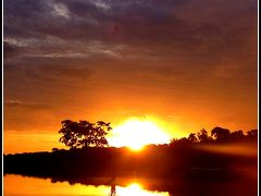 とうとう来ちまった...「地球の秘境:アマゾン〔Amazon Ecopark Lodge編〕」...5...(マナウス/ブラジル)