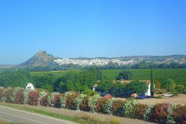 妻と行くスペイン(6-①) コルドバ行きの(バス+AVE)で「スペインの車窓から」美しい風景を楽しむ