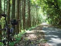 自転車で林道音信山線へ