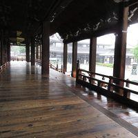 京都の二日目は寺巡り(東と西の本願寺、金閣寺)と京都駅と烏丸で酒場へ