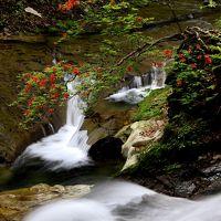 ◆秘湯二岐温泉・初夏の滝めぐり
