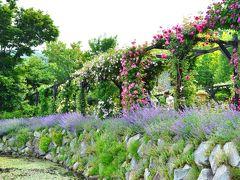バラのトップシーズンに軽井沢へ(1)~晴れの日のガーデン散策(1日目)@軽井沢レイクガーデン