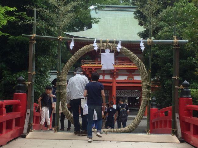 大宮にある武蔵一宮氷川神社の「茅の輪くぐり」の神事に行ってきました。<br />祭日:6月30日(毎年、6月の最後の日)<br />2017年は、6月24日より7月2日まで、茅の輪と人形納所が設けられています。<br /><br />「夏越の祓い・なごしのはらい」とは、<br />半年間の罪穢を祓い、これから暑い夏を迎えるにあたって種々の災厄を除く為の神事です。<br /><br />「茅の輪・ちのわ」をくぐると、この年は疫病にかからないと言われています。くぐる作法が有ります。(ネットで調べてくださいね。)<br /><br />「人形・ひとがた」の紙に、氏名を書き、息を吹きかけ、身を撫でて、罪穢をこのひとがたに移して納めます。<br /><br />お勧めの行き方<br />大宮駅→ 一ノ宮通りを抜け、氷川参道に入り、二の鳥居を通って神社まで。<br /><br />さいたま新都心駅→ コクーンシティを抜け、一の鳥居(参道入口)を抜けて氷川参道を歩く。時間はかかりますが、歩くのが好きな方にはお勧めです。参道は十八丁あり、一丁ごとに丁石があります。参道脇には、レストランやカフェが点在しています。<br />一の鳥居近くにイタリアン、ベーグル屋さん、火曜日~金曜日営業の台湾茶房などなど、。<br /><br />「氷川参道平成広場」では、<br />10月15日(日)まで、18:00~21:00まで「夢の力 イルミネーション」が開催中。規模は大きくありませんが、とても綺麗です。<br /><br /><br />