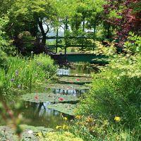 朝一番に北川村「モネの庭」へ