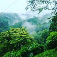 近鉄週末フリーパスを使って「吉野・湯の山温泉・名古屋満喫」