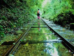君とイク夏2017①緑あふれる屋久島の、神秘の森の縄文杉へ。・・・今、会いにゆきます!