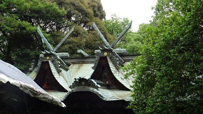 五月山動物園の途中から、隣にある池田市で一番歴史のある伊居太神社(いけだじんじゃ)へ参拝しました。<br /><br />写真は、本殿の屋根。