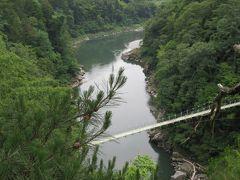 2017梅雨、長野の渓流巡り(3/5):天竜峡(1):6月28日(3):塩尻ワイン、ツバメ、橋の上から眺めた天竜峡、ポットホール、龍峡亭