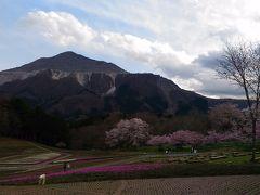 日本《秩父》一時帰国で小観光