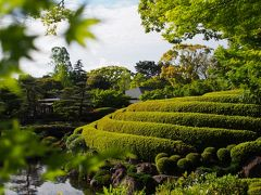 お城巡りドライブ 徳川家康公が幼少期と晩年を過ごした駿府城
