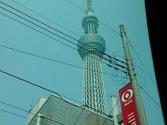 おばさん、一人で東京・舞浜へ行く ① ~タマディアホテル羽田~
