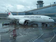 日本航空のPエコノミーで東京~モスクワ往復