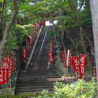 ゴンママ参加の歩こう会・・・京都東山の自然緑地と山科疎水。