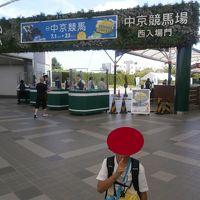 中京競馬場(平成29年第3回)