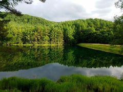 涼を求めて、信州蓼科の旅(白駒池、苔の森、乙女滝、御射鹿池を巡り)