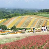 北海道の花の丘を巡りました!