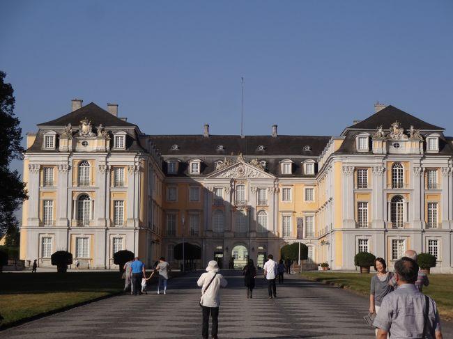 9日目は帰国前、最後の観光です。<br />ブリュールで世界遺産アウグストゥスブルク宮殿を1時間観光、20km走ってケルン観光を1時間、観光後2時間半ほど走ってフランクフルト空港に向かいました。18:05発LH716で帰国です。