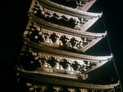 奈良の世界遺産巡り(興福寺~東大寺(今回初公開大湯屋)~唐招提寺)