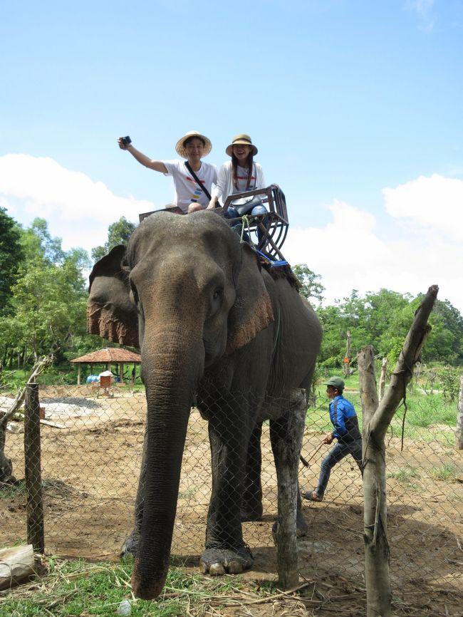 2017年7月8日(土) Viet Nam ベトナム Buon Ma Thuot バンメトート <br />象に乗っているのは明日、挙式を控えているカップルです(*^_^*)<br />準備など色々あるのに・・・<br />私達のことを気遣ってくれて、1日ツアーを計画してくれました。<br />大切な大切な1日を割いてくれて本当に本当にありがとう!!!<br /><br />象に乗るのに一人確か10万ドンでした。<br />タイのアユタヤで一度乗った事がありますが、川を渡った事がないので<br />今回トライしてみました。<br />※自分で言うのも変ですが、こういう時って何かやらかすのがとても得意なので慎重に象に乗りました。<br />なのに!主人が先に象に跨ると『バキッ!!!』っと何か壊れた音が鳴り、怖かったです。<br />何事もなく象に乗る事が出来た事に感謝ですぅ☆<br /><br /><br />