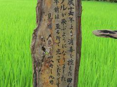 佐倉市散策(46)・・夏の夜ヘイケボタル観賞、吉見ほたるの里と下志津谷津を訪ねます。