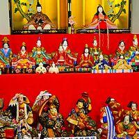 郡上八幡-5 郡上八幡博覧館 展示コーナー 一巡 ☆鯉のぼり・雛人形が飾られ