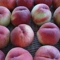 桃の買い出し(23) 笛吹市の桃生産農家で桃をゲット後、お友達のお宅へ。
