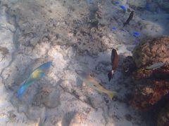 沖縄家族旅行・・旅行日程と瀬底ビーチの紹介です。