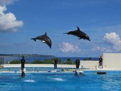 沖縄家族旅行・・美ら海水族館(2)の紹介です。