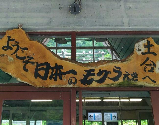 日本《水上》一時帰国で小観光