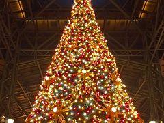 クリスマスディズニーランドに行こう!意外と空いてたよ。