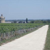 Chateau Latourにおじゃましました
