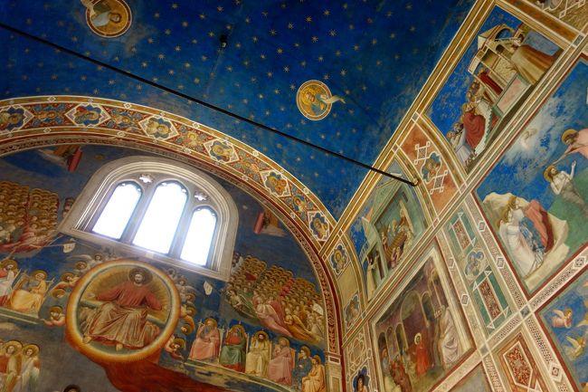 旅行9日目、クロアチアのロヴィニからベネチア経由でパドヴァへ。<br />ベネチアのホテル代が高いため、パドヴァ1泊を決めましたが、<br />パドヴァはイタリアでは有名な聖地である事を初めて知る事に。<br />パドヴァでの一番の目的がスクロヴェー二礼拝堂見学。<br />ジョットのフレスコ画で埋め尽くされた礼拝堂内部は、<br />それはそれは素敵な空間でしたが、予習不足と15分という限られた<br />時間内では消化しきれず。もっと勉強してくれば良かったと反省。<br />スクロヴェー二礼拝堂以外にも素敵な教会が盛り沢山のパドヴァでは、<br />教会巡りの一日となりました。<br /><br /><br />6/08 関空-------パリ-------ウィーン夜着(ウィーン泊)<br />6/09 ------------ウィーン散策----------(ウィーン泊)<br />6/10 ウィーン------------ハルシュタット(ハルシュタット泊)<br />6/11 ハルシュタット----------ブレッド湖(ブレッド湖泊)<br />6/12 ブレッド湖------------リュブリャナ(リュブリャナ泊)<br />6/13 リュブリャナ-----イゾラ-----ピラン(ピラン泊)<br />6/14 ピラン-------ポレチュ-----ロヴィニ(ロヴィニ泊)<br />6/15 ロヴィニ-------バーレ-------プーラ(ロヴィニ泊)<br />6/16 ロヴィニ------ベネチア----パドヴァ(パドヴァ泊)<br />6/17 パドヴァ-----ブラーノ島---ベネチア(ベネチア泊)<br />6/18 ベネチア-----パリ------<br />6/19 -----関空朝着