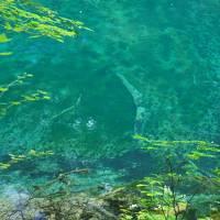 夏の青森で自然と温泉を満喫♪