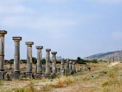 2017★モロッコ12日間/⑤メクネス→古代ローマ遺跡ヴォルビリス観光