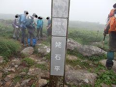 野花を求め焼石岳(2)に登りました