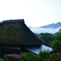宮崎南西部を満喫する旅