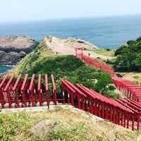 角島・元乃隅稲成神社と宮島へドライブ旅行