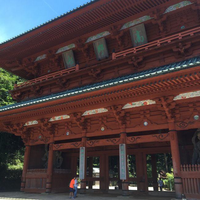 昨日比叡山延暦寺行ったので、行かないわけにいかないのが高野山。なんてたってうちの宗派は真言宗だからね!