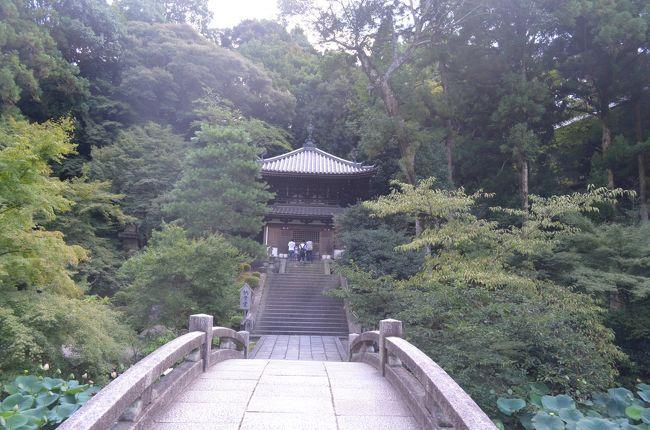 難病と診断されて2回目の誕生日を迎えることができました。そこで、恒例のバースデイ旅行の行先は、京都を選択しました。<br />まだ行ったことがない寺社を中心に巡り病気平癒と御朱印集め、そして好きな重要伝統的建造物群保存地区の散策が目的です。<br />短時間で回ることができないため、今回は祇園界隈を歩いて回ります。<br />現在の体調および猛暑日の中では、ゆっくりとしか歩くことができないため、他にも回りたいところがありましたが、これが限界でした。<br /><br />