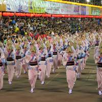 やっぱり踊りはやめられない 踊る阿呆にみる阿呆 天下御免の夏きたる! 徳島阿波踊り2017 (1/3)