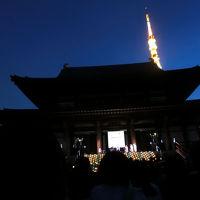 増上寺の100万人のキャンドルナイトへ(2017年6月)