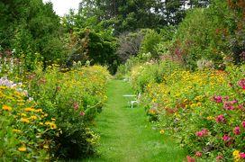 [十勝をぐるり]花と自然と畑の恵みを楽しむ旅(1)~広大なお花畑《紫竹ガーデン》