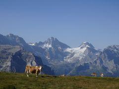 ANAチャーター機 シャモニー・グリンデルワルド・ツェルマットのハイキングツアー前編 2017年8月