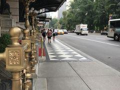 まだまだゴシガル、引っ張るよ! ニューヨーク17DAY2プラザホテルの横で