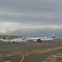 JAL500便 新千歳→→羽田