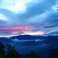 真夏の台北と阿里山観光